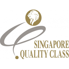 BUSINESS EXCELLENCE SINGAPORE QUALITY AWARD